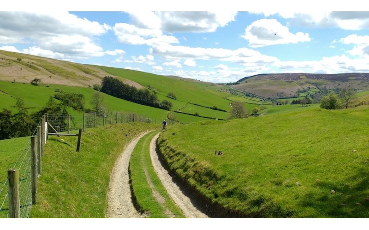 Llanbedr Hill MTB Hay-on-Wye