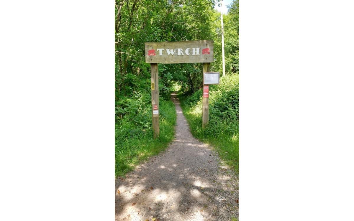 Cwmcarn Twrch Trail Review